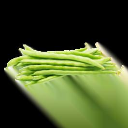 Fasolka szparagowa zielona kg